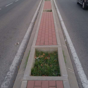 Ciudadanos (Cs) Pinto solicita mejoras en la mediana de la calle Cataluña y el talud Parque Norte